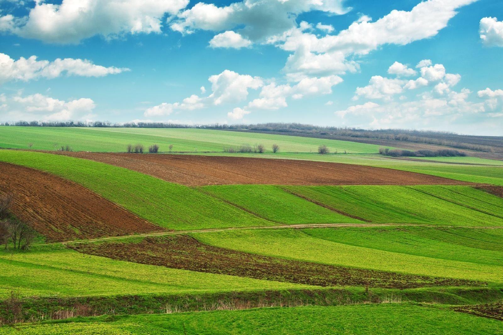 Заявление о продлении срока аренды земельного участка