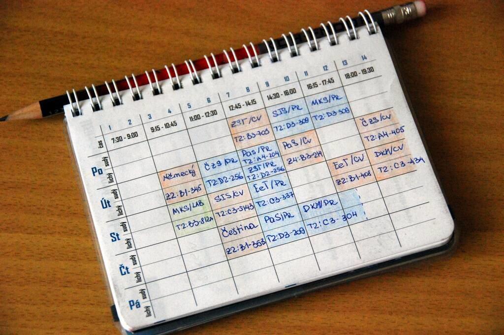 правильное расписание питания на день